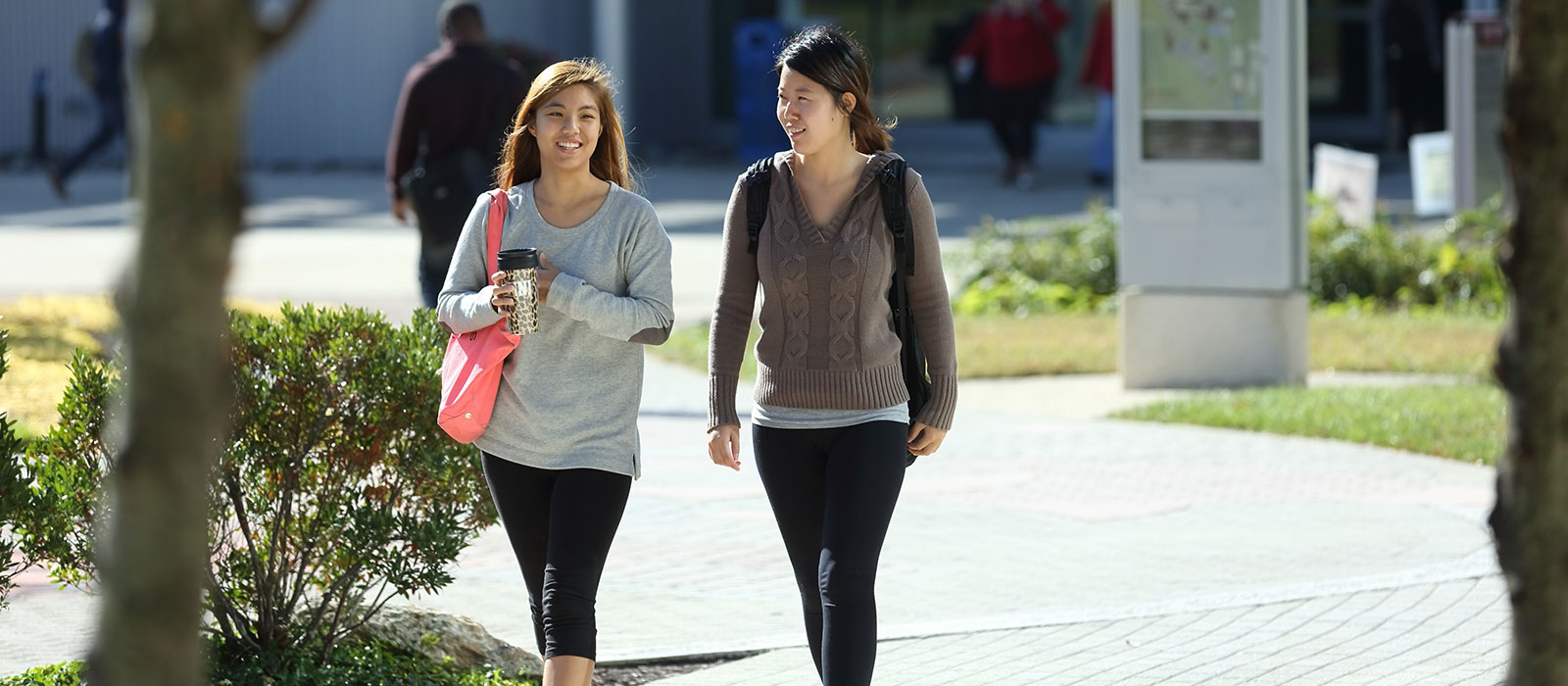 students walking across hcc campus