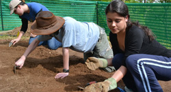 students learning about archeology